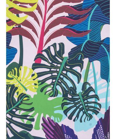 Jays Jungle Wallpaper