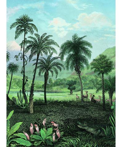 Savannah Landscape Wallpaper